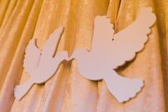 Carton birds Royalty Free Stock Photos