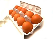 Carton box with eggs Stock Images