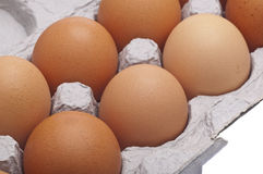 Carton of Brown Eggs Royalty Free Stock Photo