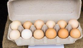 Carton of brown organic eggs Stock Photos