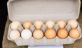 Carton of brown organic eggs Stock Images