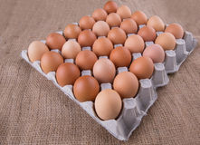 A Carton of Chicken Eggs VI Stock Images