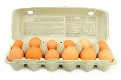 Carton of dozen brown eggs stock photography