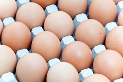 Carton of eggs Royalty Free Stock Photography
