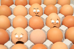 Carton of eggs. And different others egg Stock Image