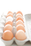 Carton of eggs. Carton of brown eggs and one white egg Royalty Free Stock Images