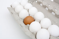 A carton of eggs. Royalty Free Stock Image