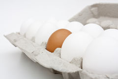 A carton of eggs. Royalty Free Stock Images