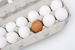 A carton of eggs. Royalty Free Stock Photo
