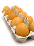 Carton of Eggs. Isolated Royalty Free Stock Photo