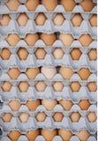 Carton of eggs Stock Photography