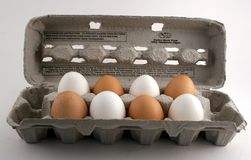 Carton of Eggs Royalty Free Stock Photos