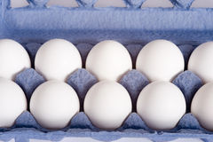 Carton of Eggs Royalty Free Stock Image