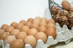 Carton of eggs. Rack of eggs in a carton Royalty Free Stock Image