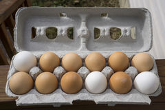 Carton Full Of Mixed Colored Organic Eggs Royalty Free Stock Photography