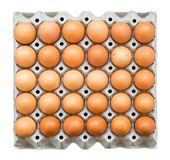 Carton paper tray with 30 brown chicken eggs, isolated on white background, top view stock photos