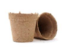 Carton vase Stock Photo