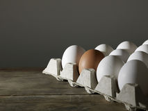 Carton of White Eggs with One Brown Egg Royalty Free Stock Images