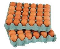Cartone dell'uovo. Immagine Stock Libera da Diritti