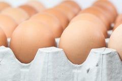 Cartone dell'uovo Fotografia Stock