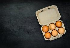 Cartone dell'uovo con lo spazio della copia Immagine Stock