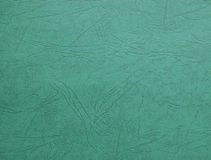 Cartone verde Immagini Stock