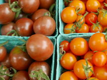 Cartons of tomatoes. Green cardboard cartons of orange and deep red cherry tomatoes Stock Photo