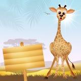 Cartoo de la jirafa Imágenes de archivo libres de regalías