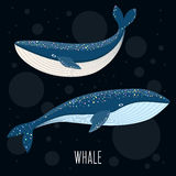 Cartoon abstract whale. Royalty Free Stock Photos