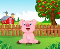 Cartoon adorable baby pig on the farm Stock Image