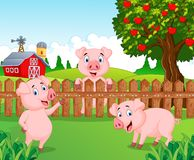 Cartoon adorable baby pig on the farm Stock Photos