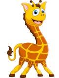 Cartoon adorable giraffe on white background Royalty Free Stock Image