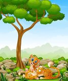 Cartoon adult cheetah with cub cheetah in the jungle Royalty Free Stock Images