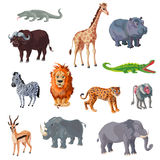 Cartoon African Animals Set Stock Photography