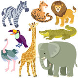 Cartoon african animals set. Illustration of isolated african animals set on white background Royalty Free Stock Image