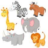 Cartoon african animals  Stock Photography
