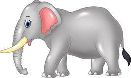 Cartoon African elephant isolated on white background Stock Images