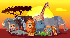 Cartoon African Fauna Template Royalty Free Stock Image