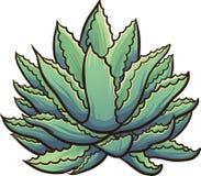 Cartoon agave Royalty Free Stock Image