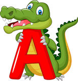Cartoon alligator with alphabet A Royalty Free Stock Image