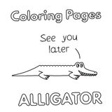Cartoon Alligator Coloring Book Royalty Free Stock Images