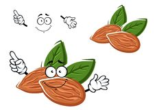 Cartoon almonds nuts with leaves Stock Images
