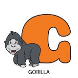 G with gorilla. Cartoon alphabet card. Vector illustration of educational alphabet card with cartoon character for kids Stock Photography