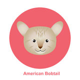 Cartoon American Bob Tail Cat in Circle Vector Illustration. Colorful Cartoon American Bob Tail Cat in Circle, happy and running on white background - Vector Stock Photography