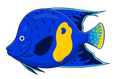 Cartoon angelfish Stock Photo