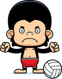 Cartoon Angry Beach Volleyball Player Chimpanzee Stock Images