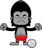 Cartoon Angry Beach Volleyball Player Gorilla Royalty Free Stock Images
