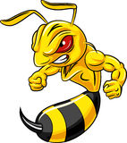 Cartoon angry bee mascot isolated on white background Stock Image