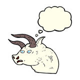cartoon angry bull head with thought bubble Royalty Free Stock Photography
