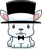 Cartoon Angry Bunny Top Hat Royalty Free Stock Photos
